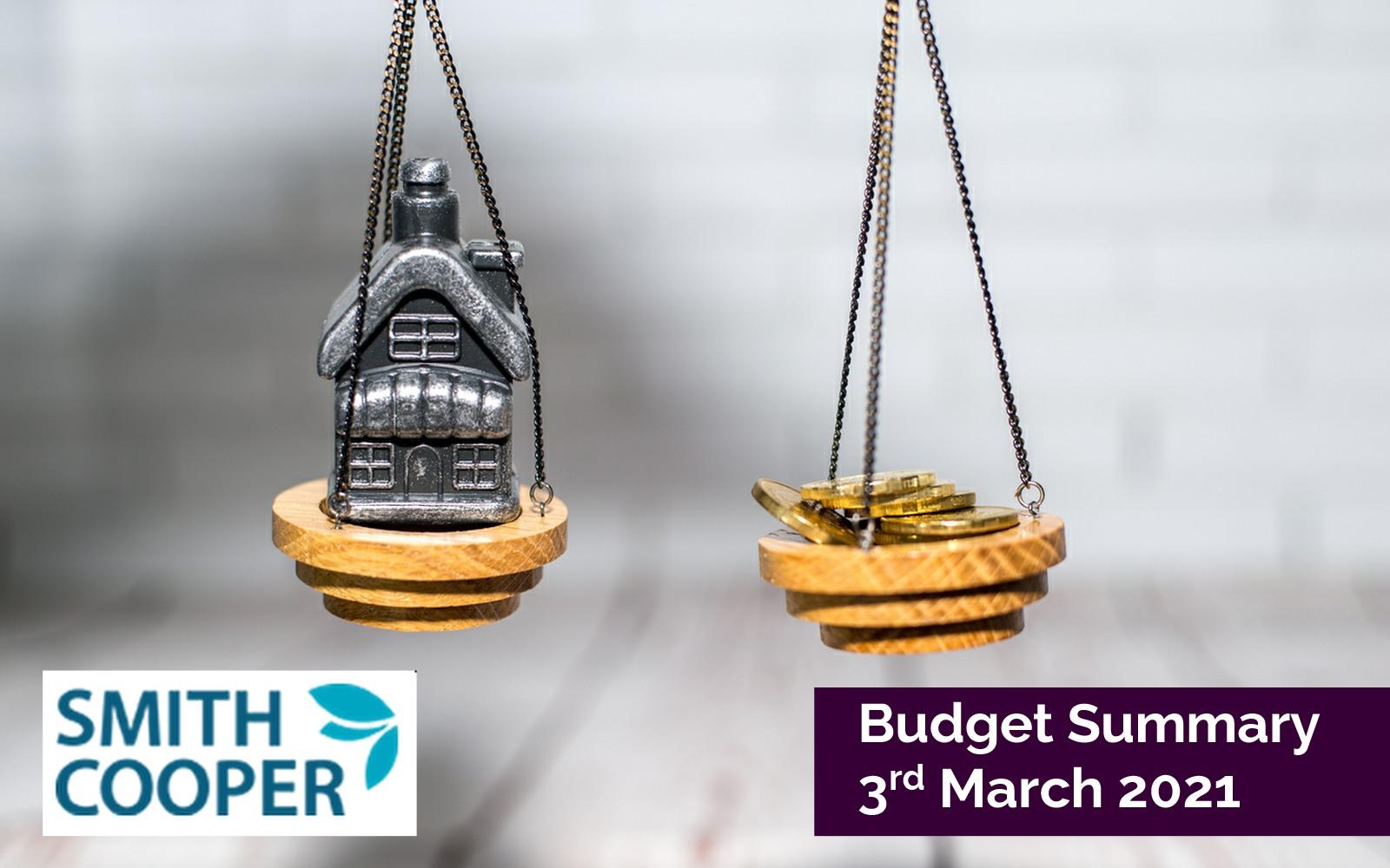 Budget Summary 3rd March 2021